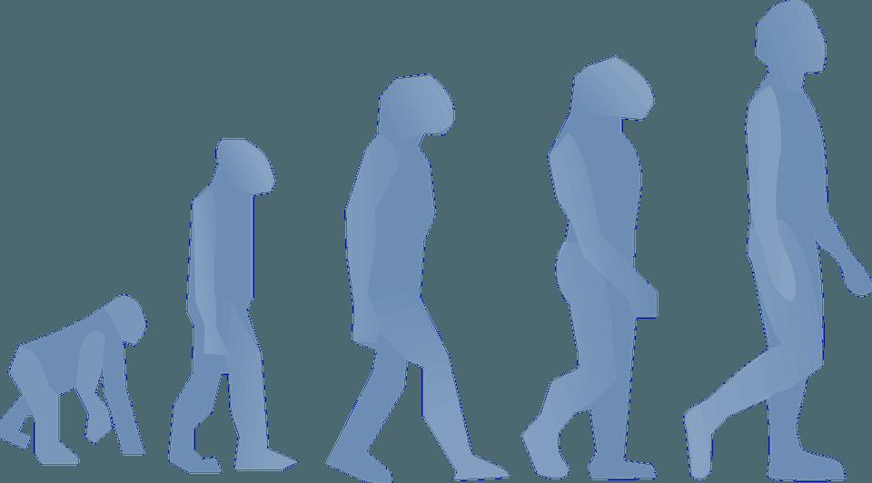 Voting Tool Evolution Schaubild